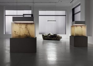 Pierre Huyghe, In. Border. Deep, from Preview Frieze Week 2014