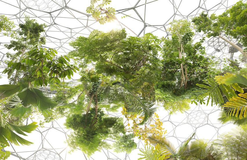 Michael Najjar, Space Garden, from AR September 2017 Previews