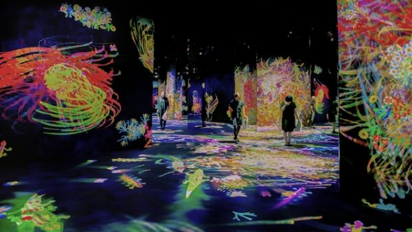 TeamLab, Graffiti Nature: Lost, Immersed and Reborn, 2018. AR December 2018 Review