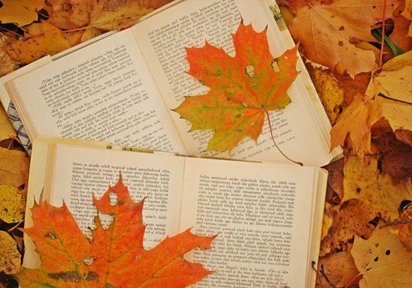 AR October 2019 Books roundup
