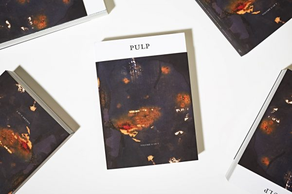 Pulp II: A Visual Bibliography of the Banished Book, by Shubigi Rao. ARA Summer 2019 Book