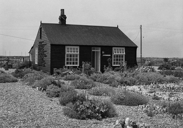 Prospect Cottage. News 01 April 2020